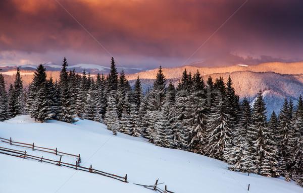 Tél fenséges napfelkelte hegyek égbolt fa Stock fotó © Leonidtit