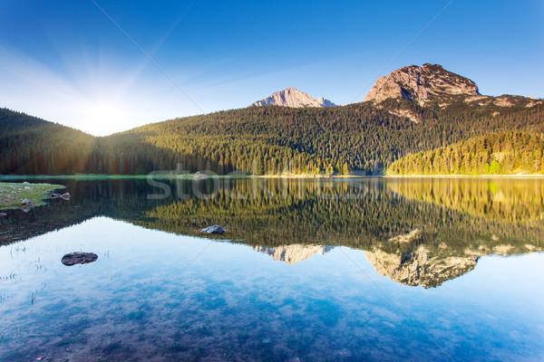 Tó fekete park Montenegró Európa szépség Stock fotó © Leonidtit
