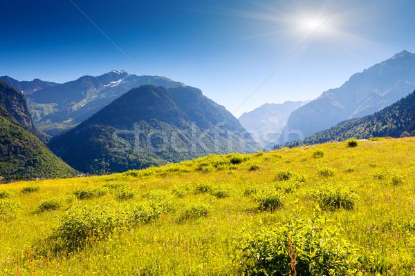 Dağ manzara güzel görmek alpine Stok fotoğraf © Leonidtit