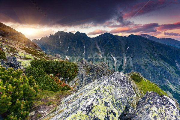 Beautiful view of mountain landscape in National Park High Tatra. Dramatic overcast sky. Slovakia, E Stock photo © Leonidtit