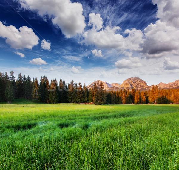 Montagne merveilleux vue montagnes parc Monténégro Photo stock © Leonidtit