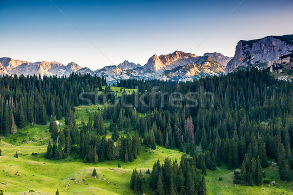 mountain landscape Stock photo © Leonidtit