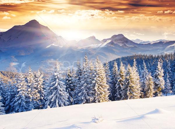 зима фантастический вечер пейзаж драматический небе Сток-фото © Leonidtit