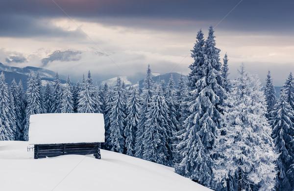 Tél fantasztikus tájkép drámai égbolt park Stock fotó © Leonidtit