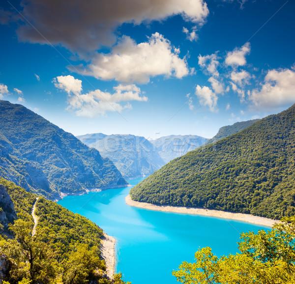 The Piva river in Montenegro Stock photo © Leonidtit