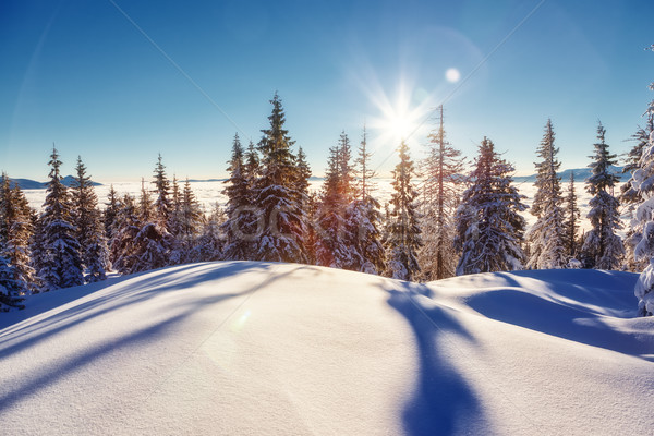 Stockfoto: Fantastisch · winters · landschap · majestueus · winter