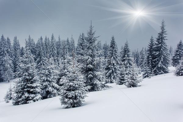 Hiver givré montagnes ciel arbre Photo stock © Leonidtit