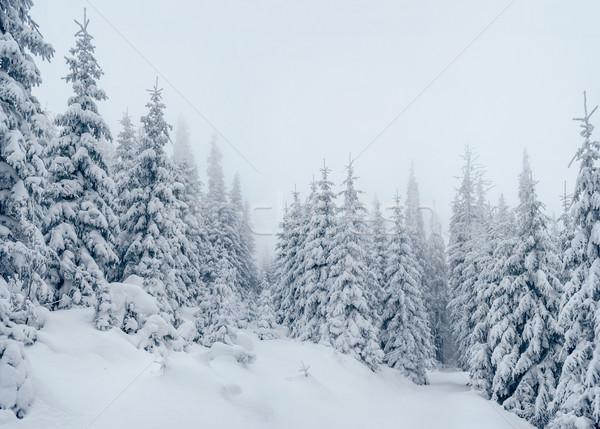 Majestic winter landscape Stock photo © Leonidtit