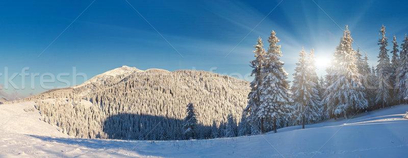 Tél fantasztikus tájkép kék ég panorámakép Ukrajna Stock fotó © Leonidtit