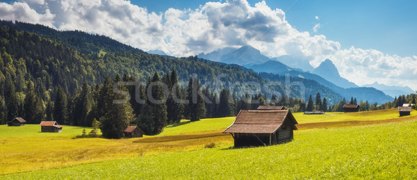 Güzel alpine vadi muhteşem görmek yeşil Stok fotoğraf © Leonidtit