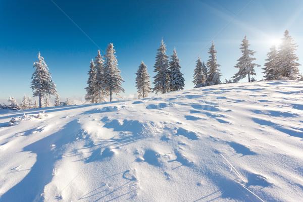 Tél fantasztikus tájkép kék ég Ukrajna Európa Stock fotó © Leonidtit
