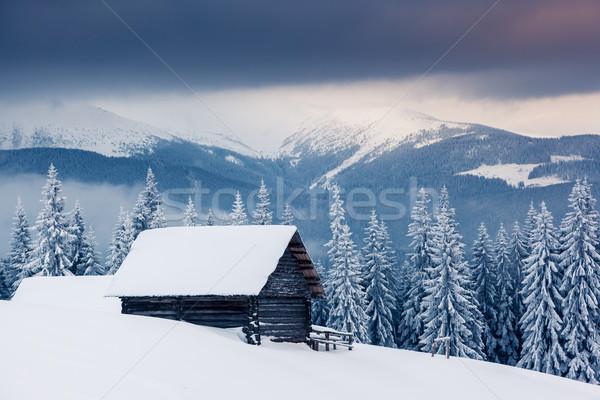 Hiver fantastique paysage dramatique ciel parc Photo stock © Leonidtit