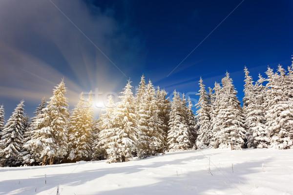 Tél fenséges naplemente hegyek égbolt fa Stock fotó © Leonidtit