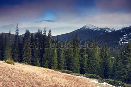 山 景觀 美麗 山 天空 商業照片 © Leonidtit