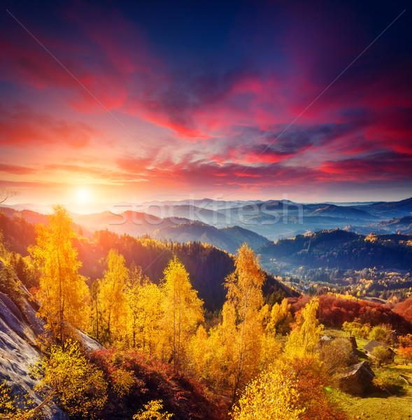 Colorato foresta alberi sereno montagna Foto d'archivio © Leonidtit