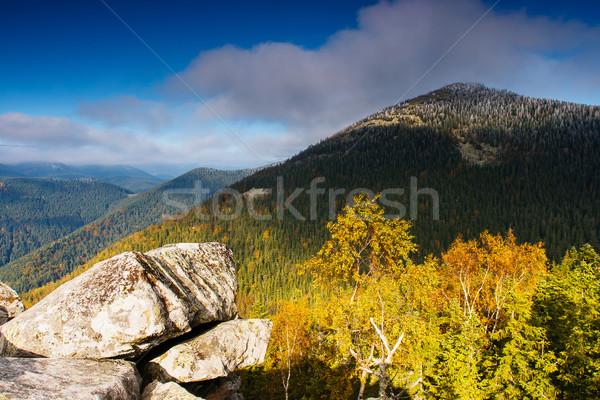 Automne majestueux matin montagne paysage coloré Photo stock © Leonidtit