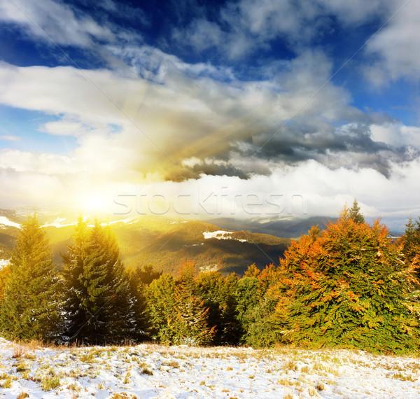 Montagna panorama foresta primo inverno neve Foto d'archivio © Leonidtit