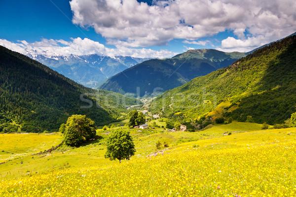 горные пейзаж красивой мнение альпийский Сток-фото © Leonidtit