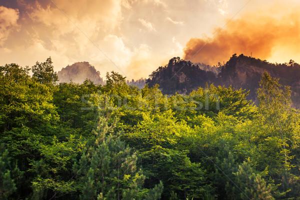 canyon Stock photo © Leonidtit