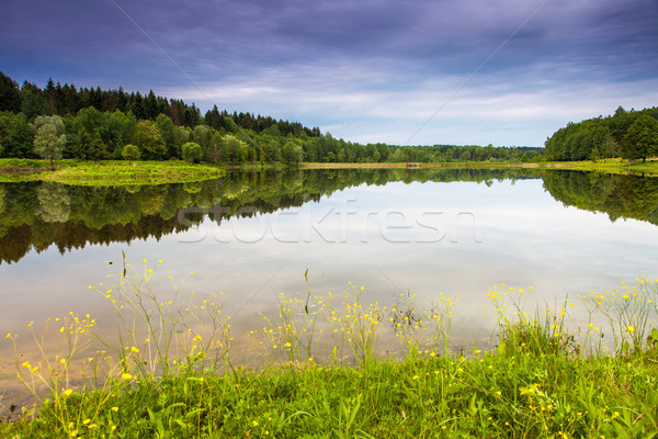 Lac fantastique paysage dramatique ciel Ukraine Photo stock © Leonidtit