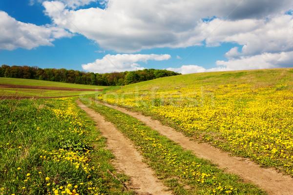 rural Stock photo © Leonidtit