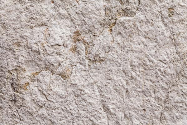 грубо текстуры древних каменной стеной Сток-фото © leowolfert