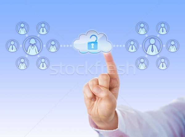 Toegang twee werk teams wolk Stockfoto © leowolfert