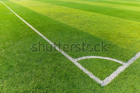 Futballpálya textúra fű sport futball mező Stock fotó © leungchopan