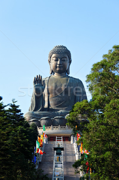 Tian Tan Buddha in Hong Kong Stock photo © leungchopan