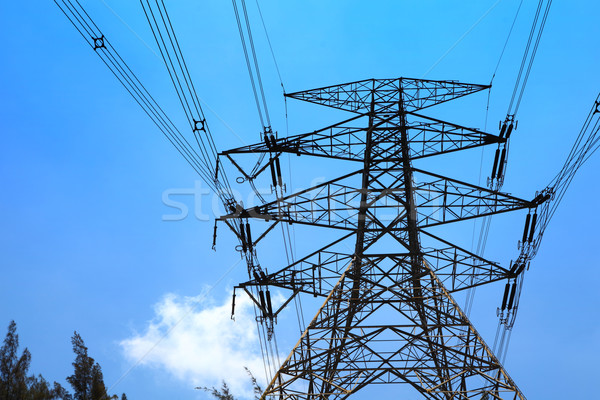 Powerline Stock photo © leungchopan