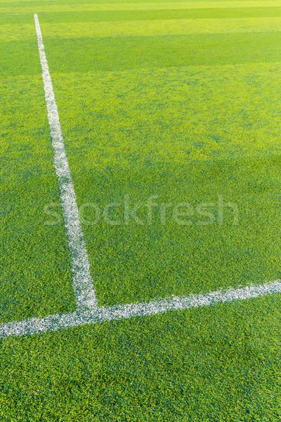 Fehér vonal zöld tőzeg futball bíróság Stock fotó © leungchopan