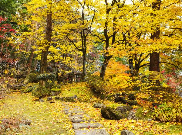 ősz erdő ösvény hegy fa természet Stock fotó © leungchopan