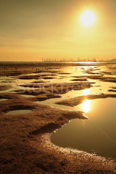 sunset at beach Stock photo © leungchopan