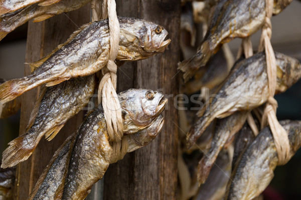 Stock photo: Dried salty fish hanging on the store