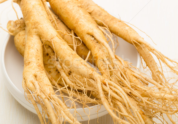 Fresh ginseng root texture Stock photo © leungchopan