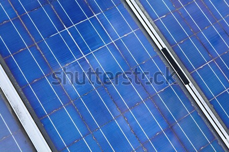 solar panel cell Stock photo © leungchopan