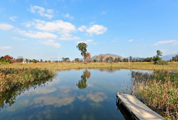 озеро пейзаж пирс небе свет Сток-фото © leungchopan