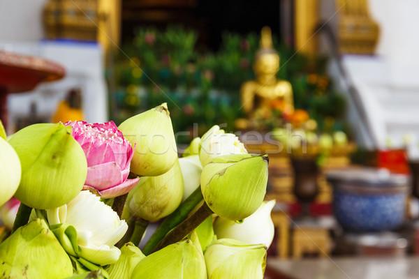 Stock fotó: Lótusz · rügy · Thaiföld · templom · virág · szobor