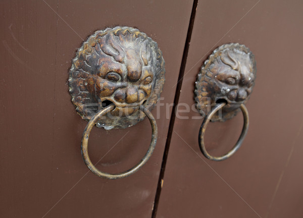 Stok fotoğraf: Aslan · kapı · kilitlemek · dizayn · Metal · ejderha