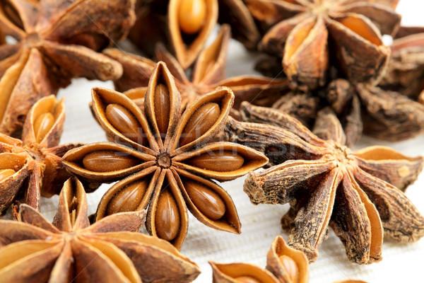 анис звезды белый Spice трава изолированный Сток-фото © leungchopan