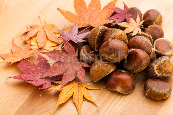 Chestnut and dried maple leave Stock photo © leungchopan