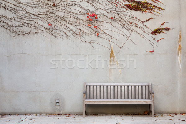 Relaxation with bench in garden Stock photo © leungchopan
