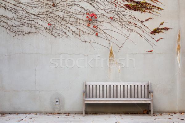 ławce ogród ściany liści roślin Zdjęcia stock © leungchopan