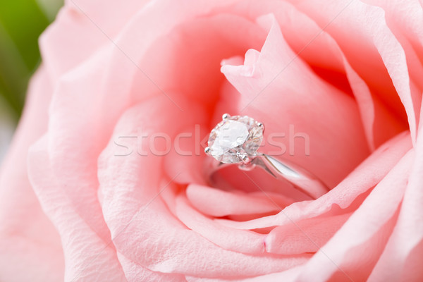 Pink Rose with diamond ring Stock photo © leungchopan