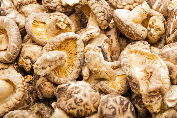 Dried mushroom shiitake Stock photo © leungchopan