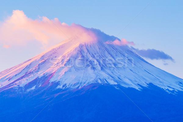 Fuji Świt wygaśnięcia krajobraz górskich roślin Zdjęcia stock © leungchopan