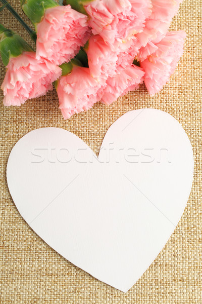Pink carnation with paper card Stock photo © leungchopan