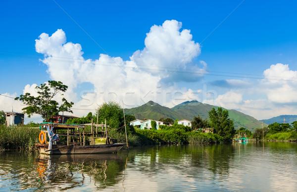 Beautiful wetland Stock photo © leungchopan