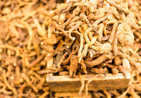 сушат женьшень продовольствие рынке Азии контейнера Сток-фото © leungchopan