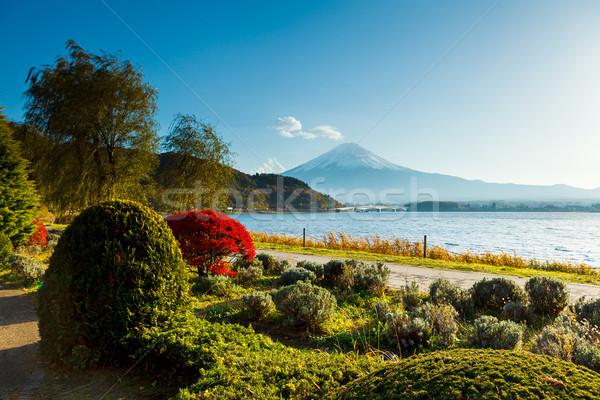 Foto stock: Fuji · outono · paisagem · lago · rio · planta